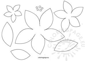 poinsettia template poinsettia flowers patterns coloring page