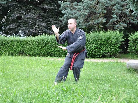 kung fu pavia kung fu marcignago pavia scuola feng huang