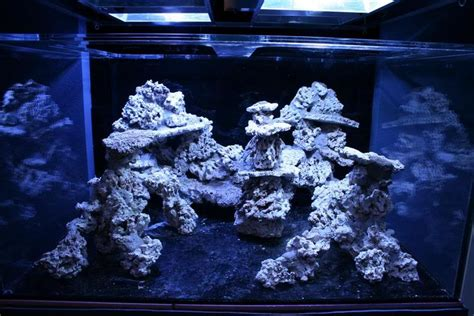 saltwater aquarium aquascape how to aquascape a reef aquarium from the top here is a