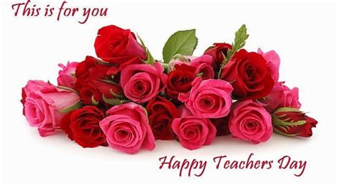 happy teacher s day quotes wishes greetings whatsapp video for teacher   youtube