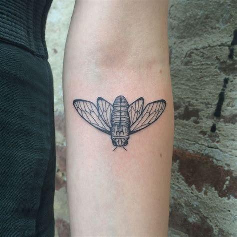 cicada tattoo karenglasstattoo tattoos femininetattoos