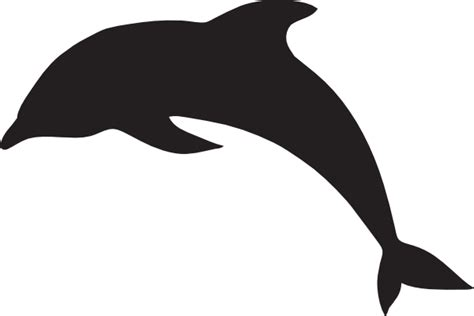 dolphin outline clipart best jumping dolphin outline clipart best