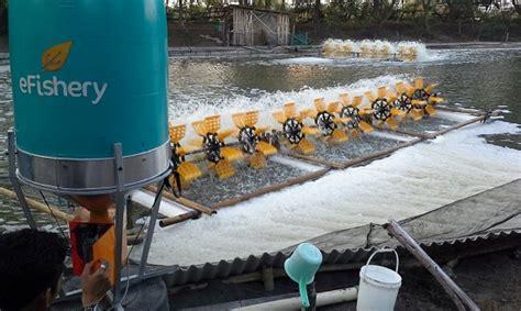 Alat Pemberi Makan Ikan Otomatis Berbasis Arduino efishery dapat investasi pra seri a dari aqua spark