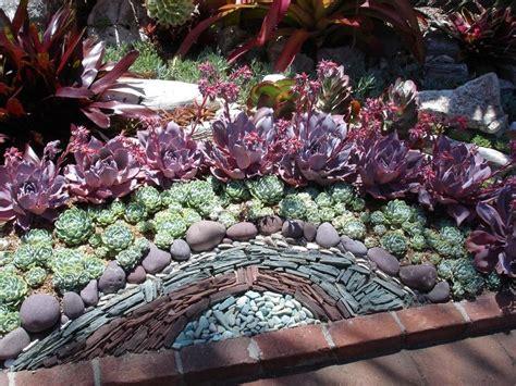 Cactus Succulent Rock Garden Design Gardening Cactus Garden Designs