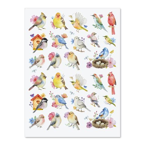 watercolor birds stickers current catalog