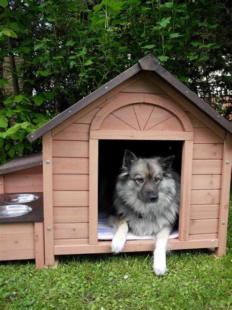 Come Costruire Una Cuccia Per Cani Con I Pallet by Come Costruire Una Cuccia Per Cani Donnad
