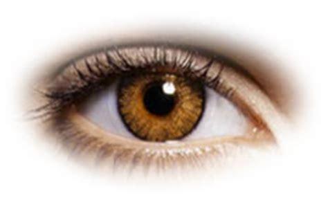 Softlens Freshlook Colorblends Hazel Flcb freshlook colorblends honey contact lenses optyk rozmus