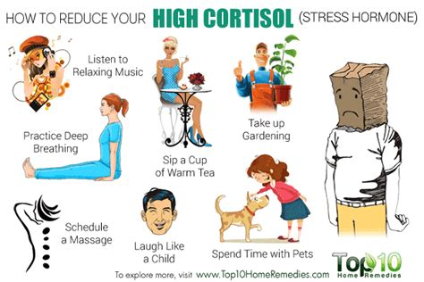 high cortisol levels how to reduce your high cortisol stress hormone level