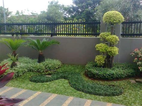 tukang taman terpercaya  jakarta jual tanaman hias murah