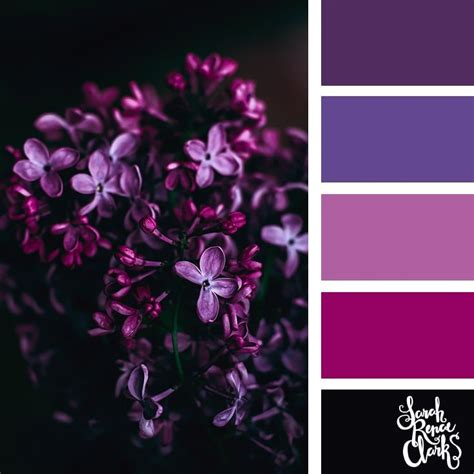 the color purple themes best 25 purple color combinations ideas on