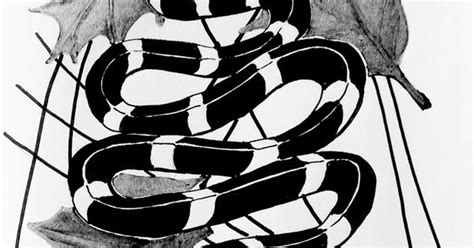 Mianan King Cobra Black Silver king snake drawing with black and silver sharpie mixed