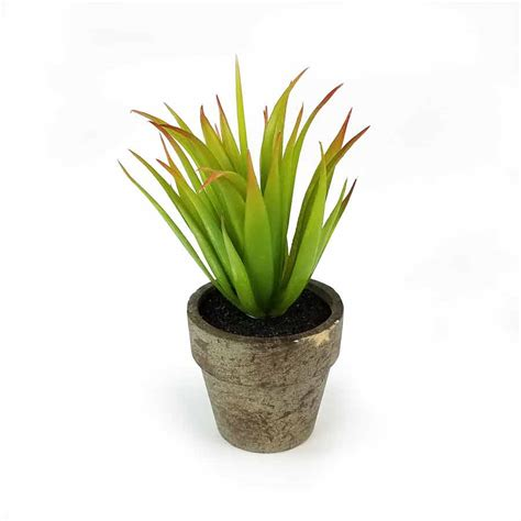 agave in vaso vaso agave artificial 15cm nature flores