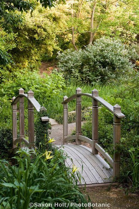 Bunga Yarrow Mixed 248 best images about secret garden on