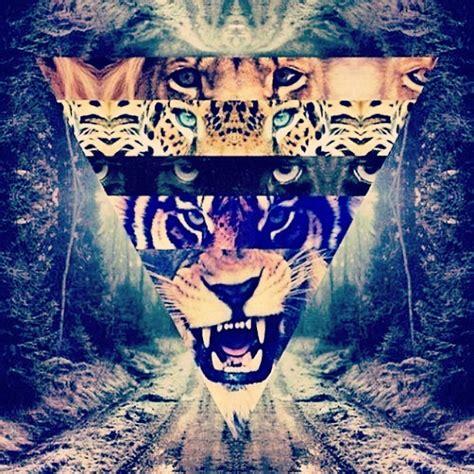 imagenes de leones swag tumblr galaxy lion www imgkid com the image kid has it