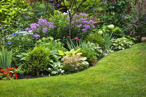 how to design a flower bed when to divide perennial flowers growing together with