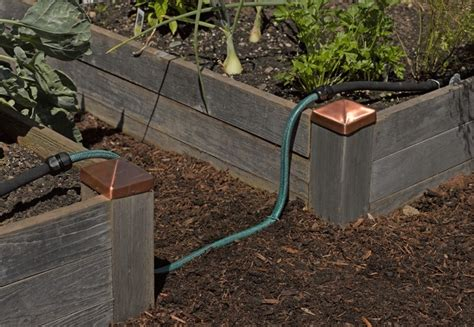 drip irrigation for raised beds pin by allison lott on gardening edibles raised beds