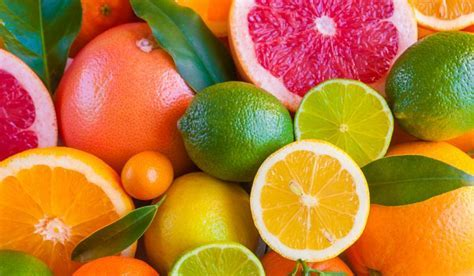 The World's Top Citrus Producing Countries   WorldAtlas.com