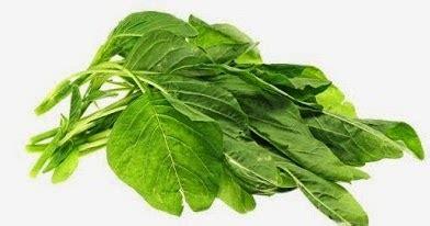 Dan Manfaat Sho Nr sedikit paham 4 manfaat menakjubkan daun bayam