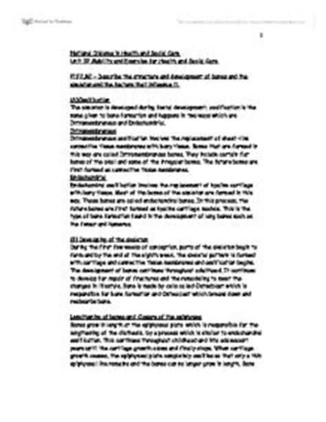Descriptive Essay Winter by Order Essay Cheap Colonization In Literature