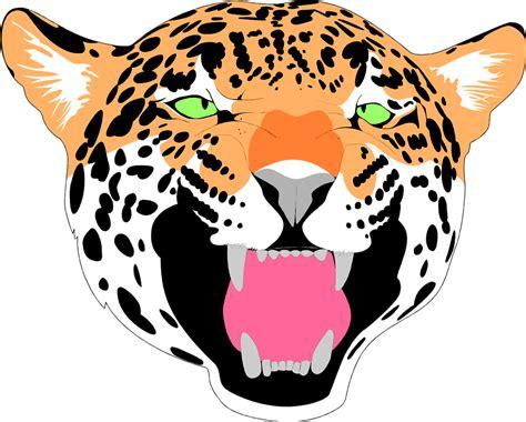jaguar clip chadholtz