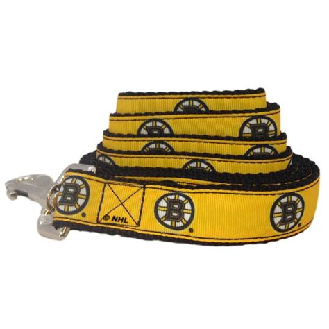 all pet dogs all dogs boston bruins leash pet safety