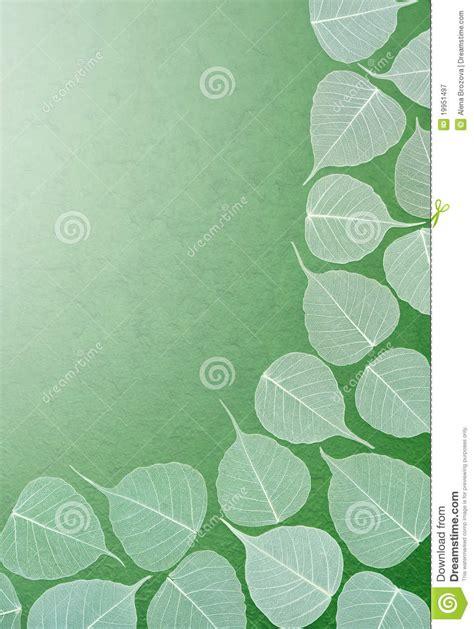Handmade Leaf Paper - skeletal leaves green handmade paper royalty free