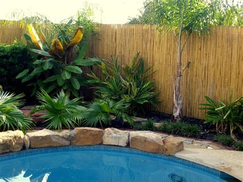 Natures Pantry State College by Backyard X Scapes Bamboo Fence 28 Images Bamboo Fencing Tropical San Diego By Backyard X