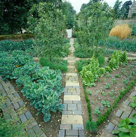 formal vegetable garden pin by kirsten on permaculture paradise