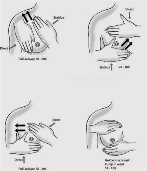 Untuk Mengencangkan Payudara Teknik Pemijatan Untuk Mengencangkan Payudara