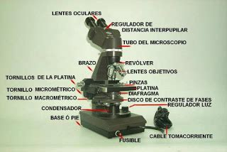 lada microscopio olaff partes microscopio