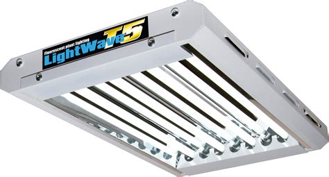 fluorescent light for seedlings fluorescent lighting fluorescent grow light bulbs t8