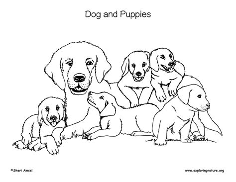 coloring pages of dog and puppy dogs and puppies coloring page