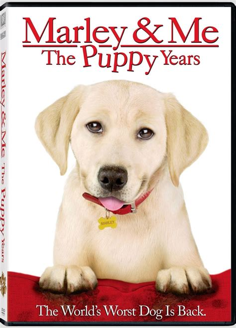 marley and me the puppy years news marley me the puppy years us dvd r1 bd ra dvdactive