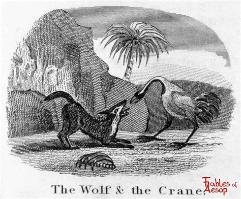 Open Sofa Fable the wolf and the crane fables of aesop