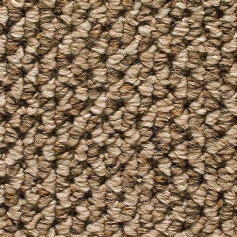 Home Decorators Carpet Home Decorators Collection Sutton Color Loop 12 Ft Carpet H5011 2001 1200 Ab The