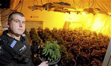 Cannabis Possession Criminal Record Marijuana Possession Felony Las Vegas Cannabis Lawyers