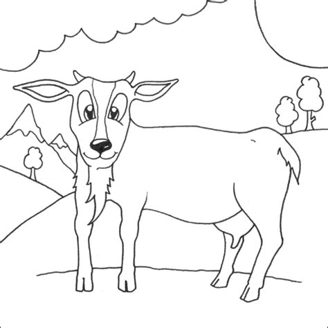 boer goat coloring page boer goat colouring