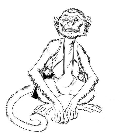 capuchin monkey coloring pages capuchin monkey coloring page animals town animals