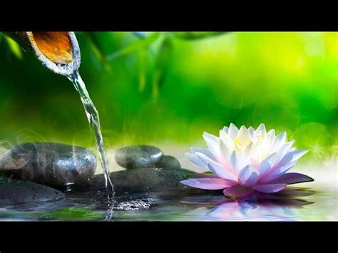 imagenes y sonidos relajantes musica relajante zen m 250 sica de relajacion y meditaci 243 n