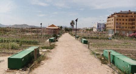 lade agro huertos urbanos ecol 243 gicos de novelda escuela de