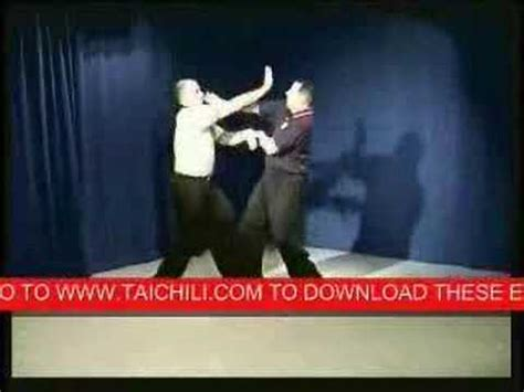 kōchi fighting dogs applying wu style chi doovi