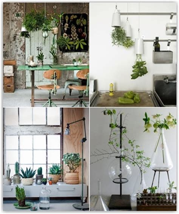 17 best images about terrariums on pinterest jars