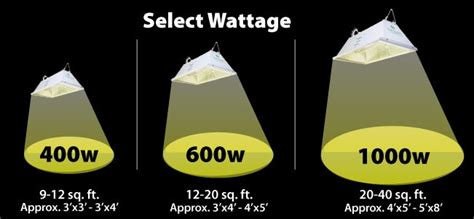 1000 watt grow light coverage wattage calculator how much light should you