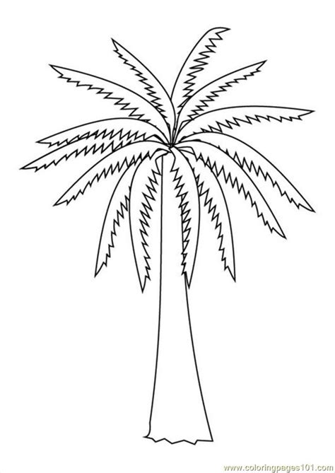 free coloring pages of free palm tree
