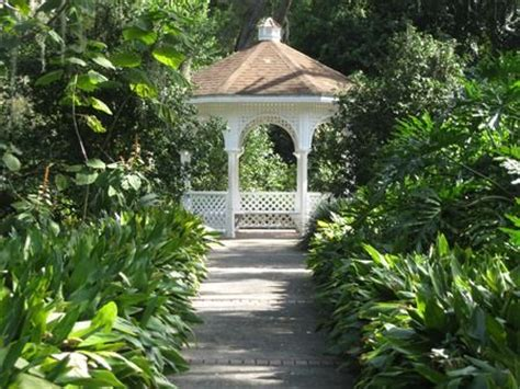 leu gardens winter park 23 best images about harry p leu gardens on