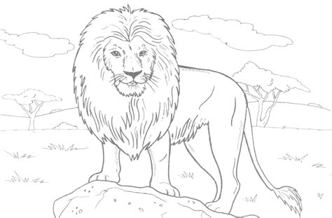 lion coloring pages national geographic lion and lamb coloring page free coloring pages of r lamb