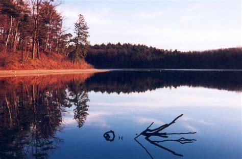 of walden contextualizing walden thoreau s introspective isolation