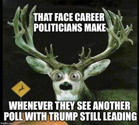 deer meme just like a deer in the headlights imgflip