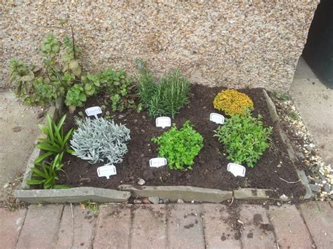 herb garden ideas pinterest herb garden ideas pinterest image mag