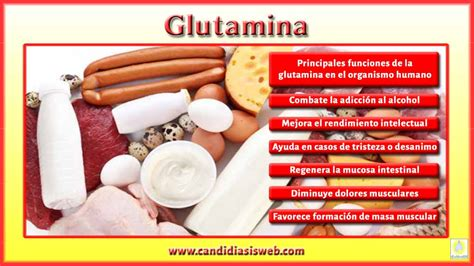 alimentos con arginina amino 225 cidos glutamina